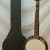 Rich and Taylor JD Crowe 5 string Banjo for Sale new