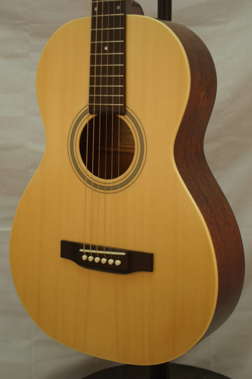 NEW Recording King Parlor Guitar RPM9M for Sale