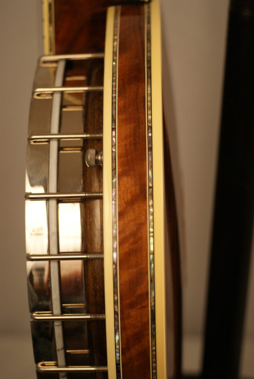 1993 Stelling Staghorn 5 string Banjo Stelling Banjo for Sale