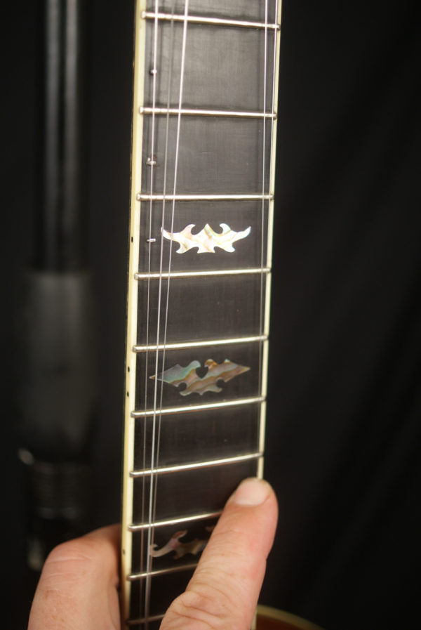 1998 Stelling Staghorn 5 string Banjo Made in USA