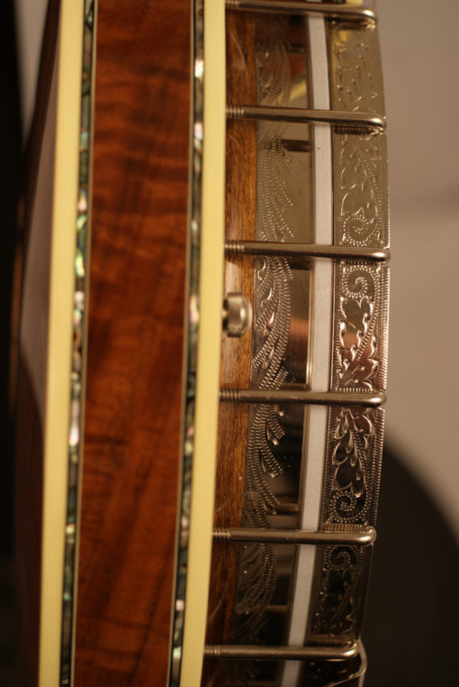 1999 Custom Engraved Stelling Staghorn 5 string Banjo GORGEOUS Stelling Banjo for Sale